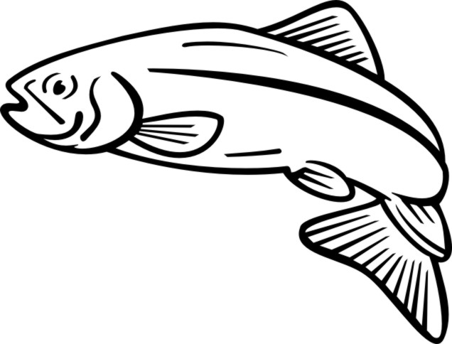 image library Free cliparts download clip. Salmon clipart.