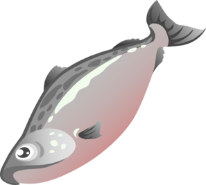 png royalty free Salmon clipart. Clip art at clker.