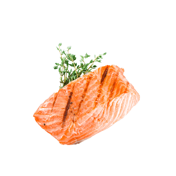 stock Salmon transparent grilled.  png for free