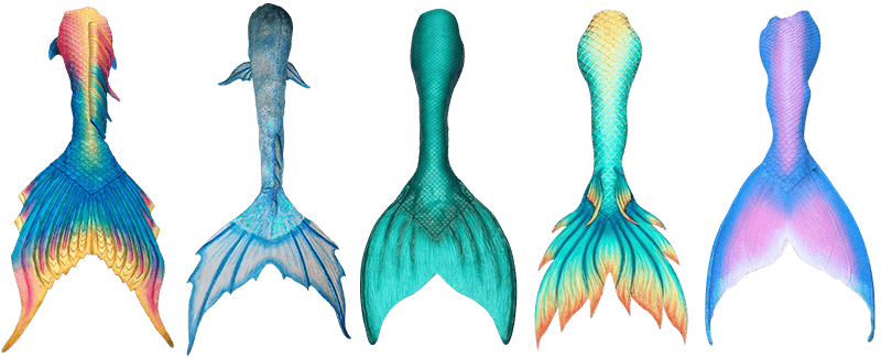 image free download Best silicone tails top. Scales clipart mermaid tail