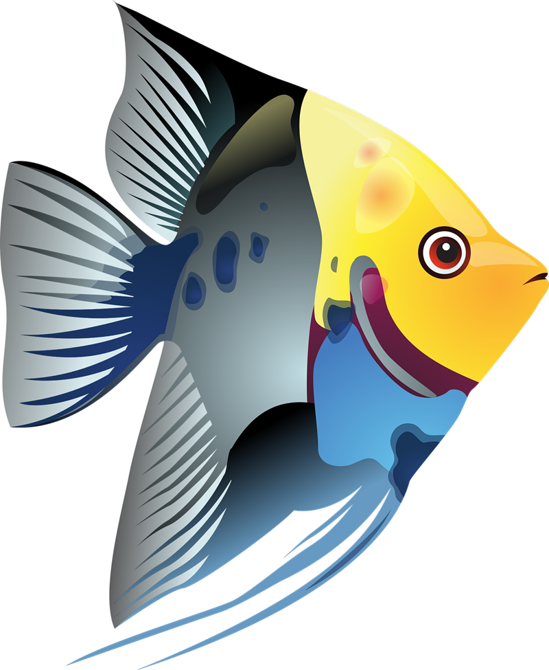 image stock School Of Fish Clipart at GetDrawings