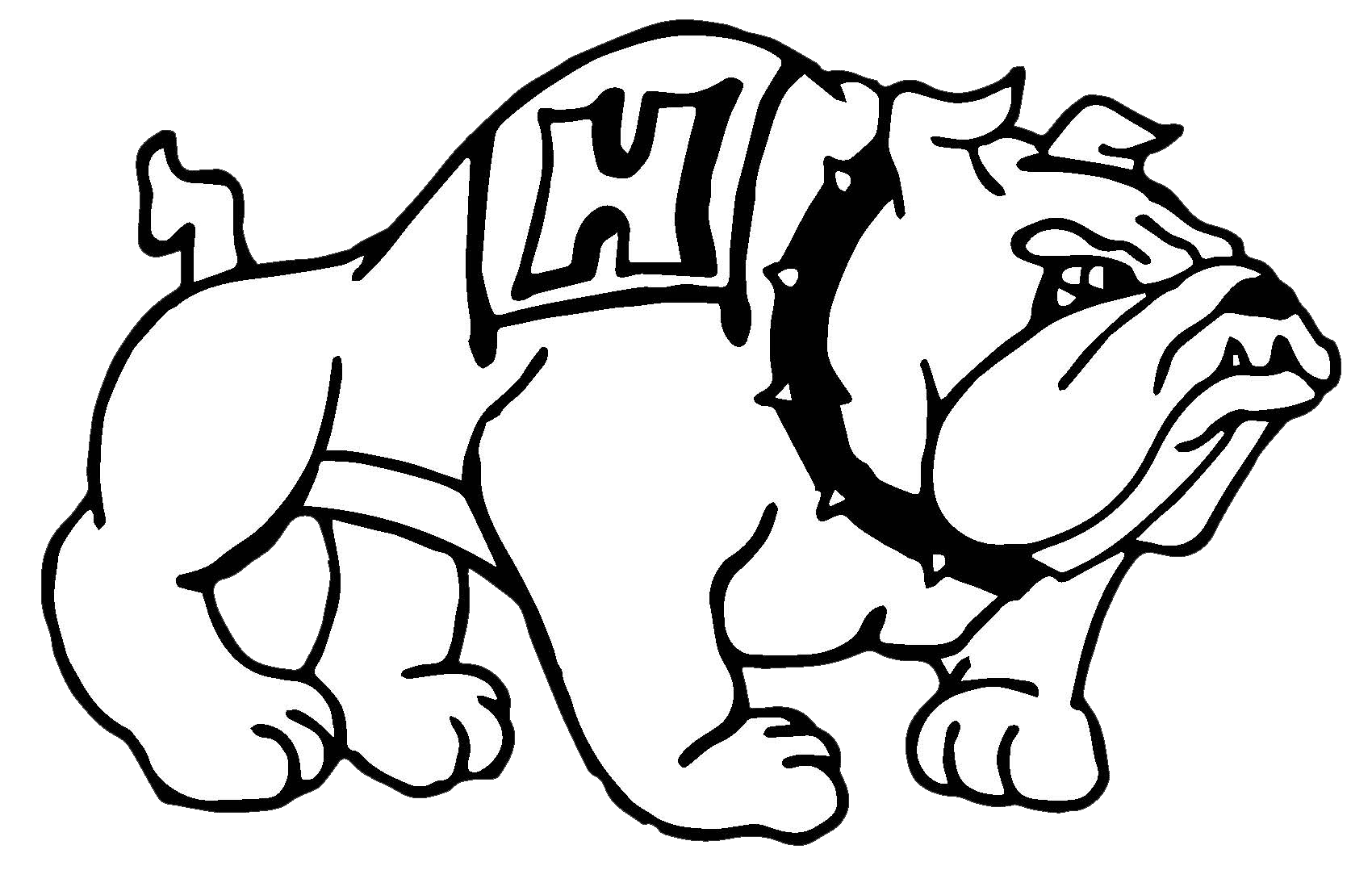 graphic library download scooter drawing bulldog #102701947
