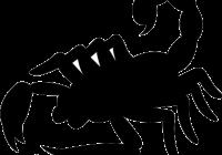 clip transparent Jpeg free on dumielauxepices. Scorpion clipart.