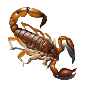 banner library download Scorpions PNG images