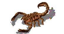 clip art download Deathstalker Scorpion