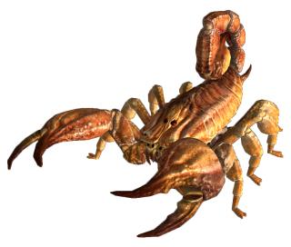 jpg royalty free stock Bark scorpion