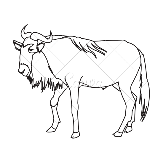 svg freeuse download Wildebeest Drawing at GetDrawings
