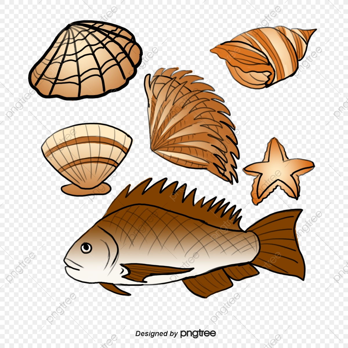 graphic transparent library Fish and products in. Seafood clipart clam