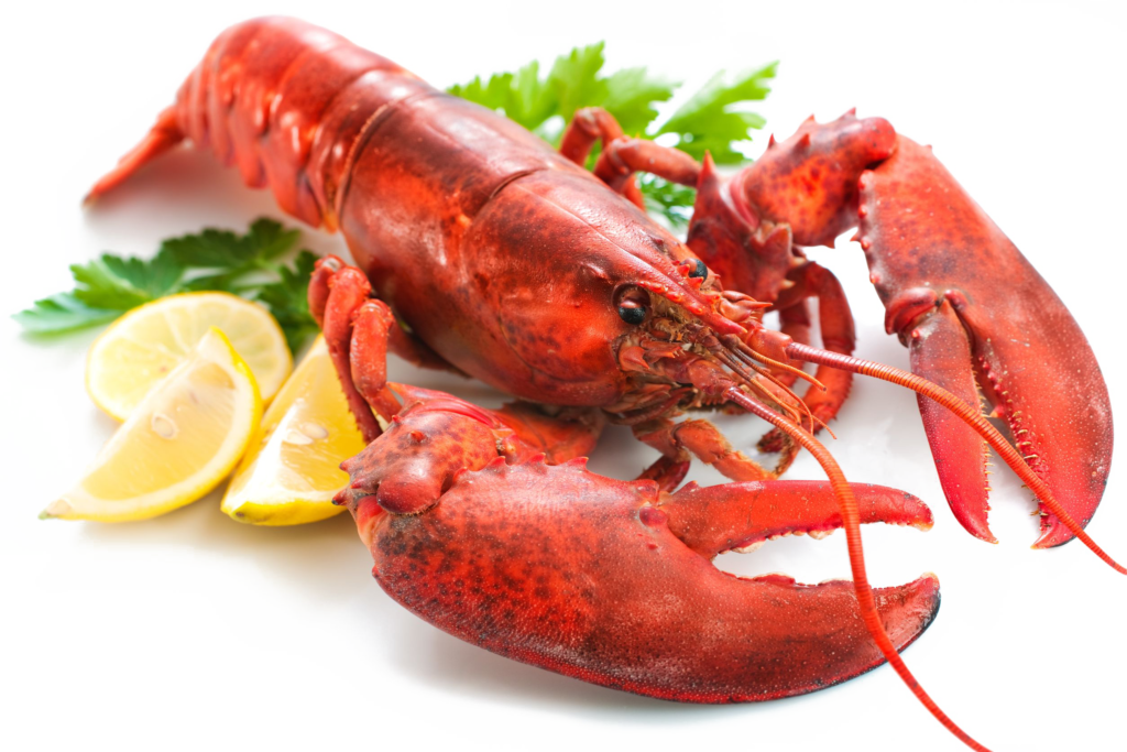 clipart royalty free download Lobster Png