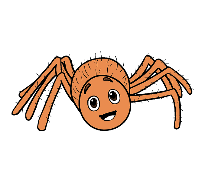 banner library stock Spider Cartoon Drawing Clip art