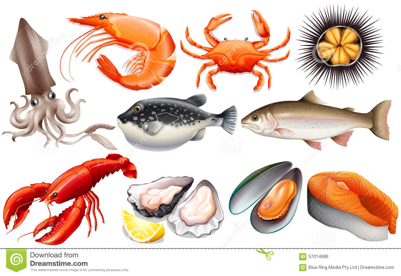 clip free stock Portal . Seafood clipart.