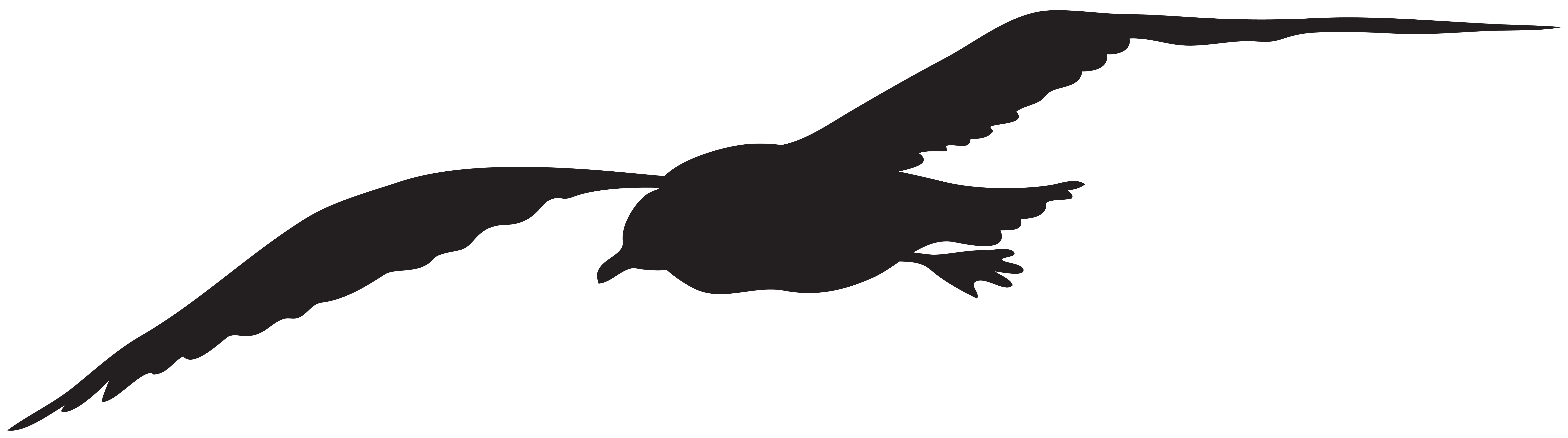 banner freeuse stock Silhouette at getdrawings com. Seagull clipart.