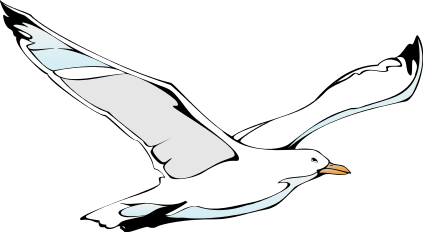 vector library download Seagull clipart. Transparent .