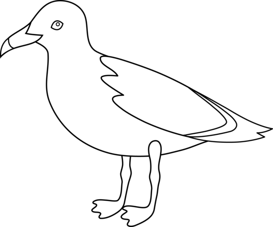 clip transparent library Seagulls drawing. Seagull line art free.