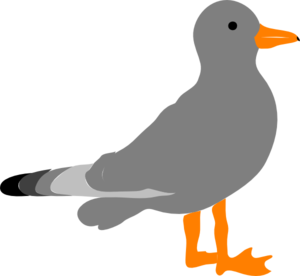 jpg black and white stock Sea gull clip art. Seagull clipart gray bird.