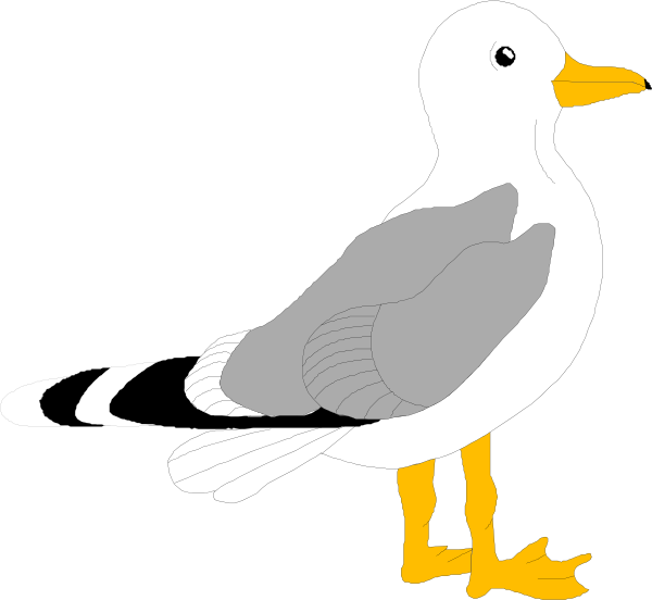 clip free library seagull craft template