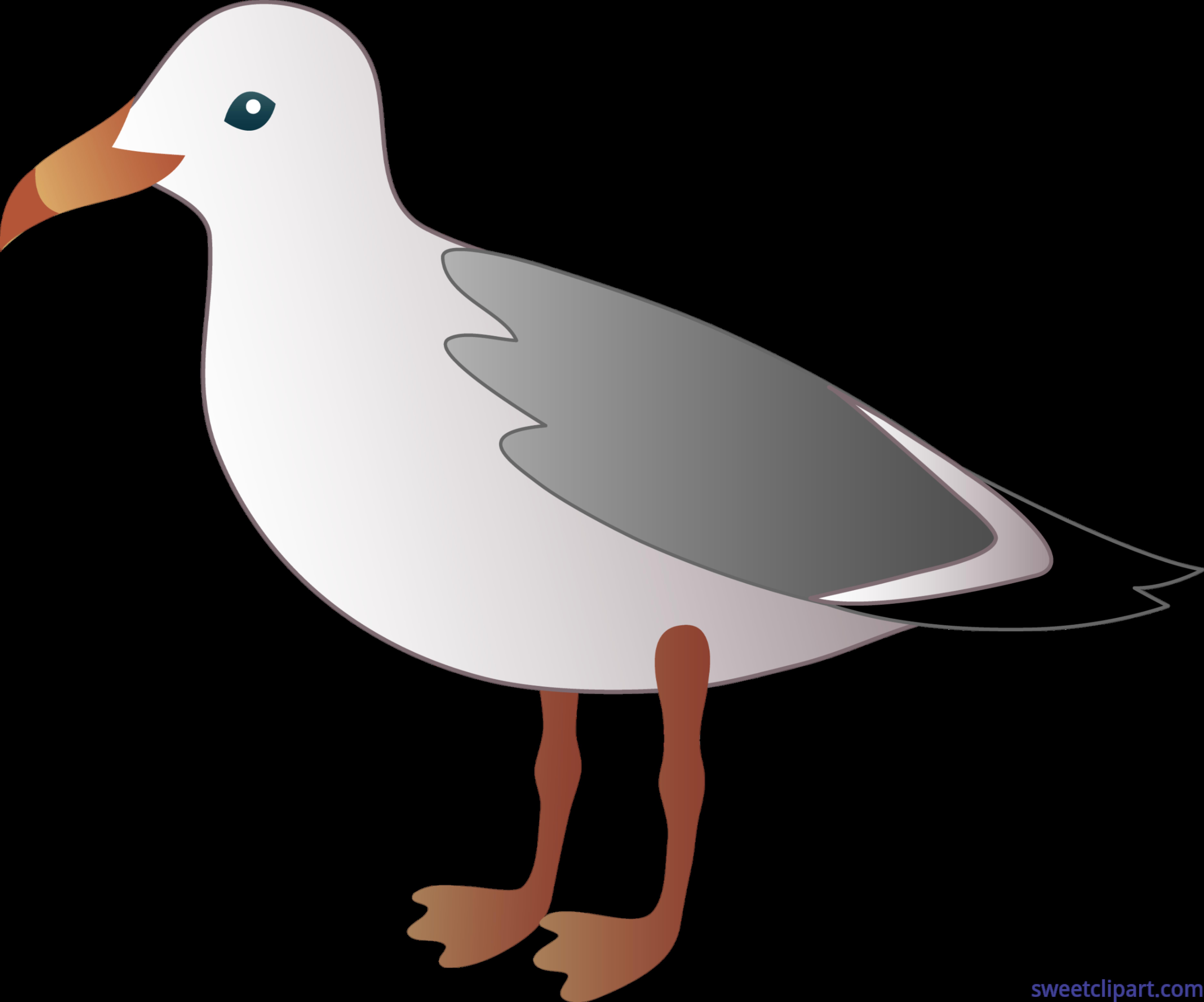clip transparent Seagull clipart. Clip art sweet.