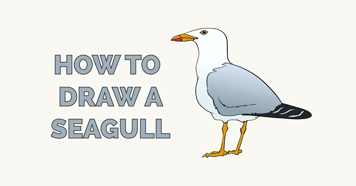 vector black and white download Seagulls drawing. How to draw a.
