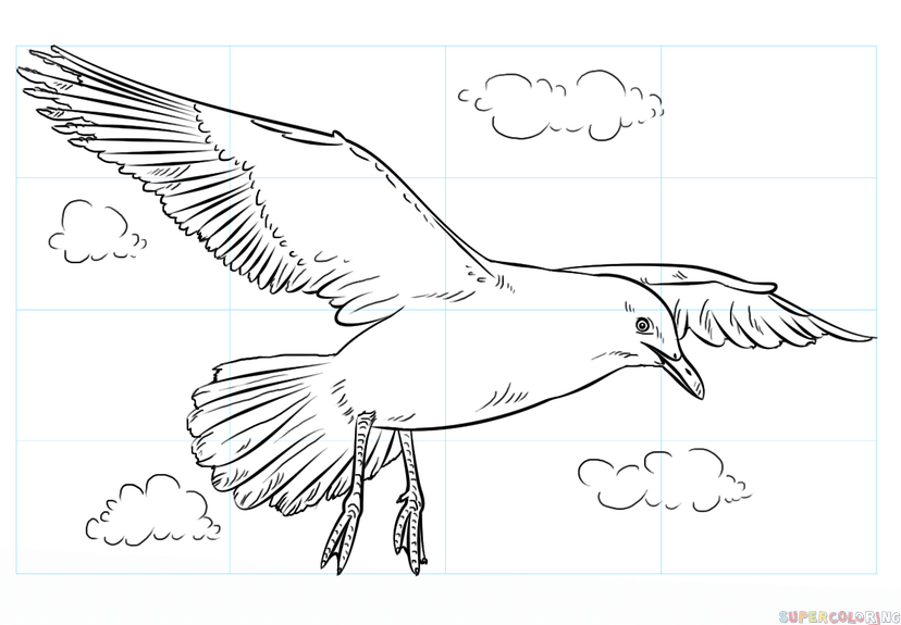 svg library download How to draw a. Seagulls drawing.