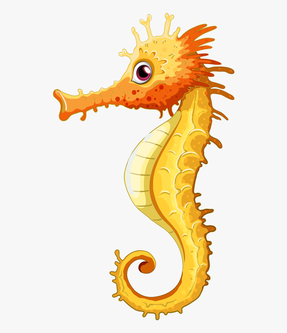 image royalty free download Seahorse clipart. Png sea horse free.
