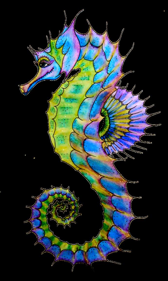 transparent stock Starfish painting panda free. Seahorse clipart.