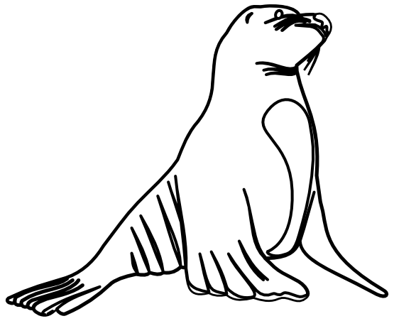 black and white library Seal clipart black and white. Clip art panda free