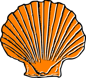 clip black and white Image result for by. Seashells clipart.