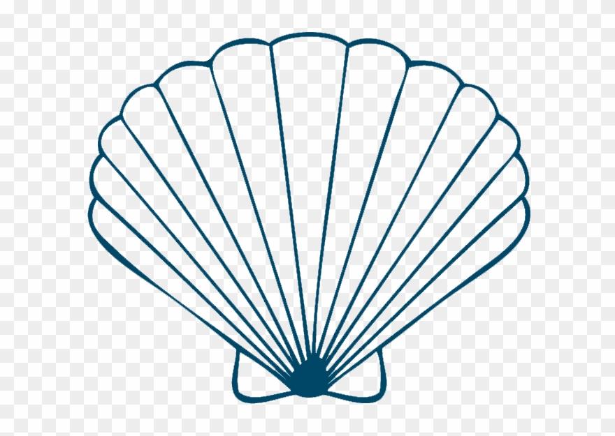 jpg freeuse download Sea shells on and. Seashells clipart.