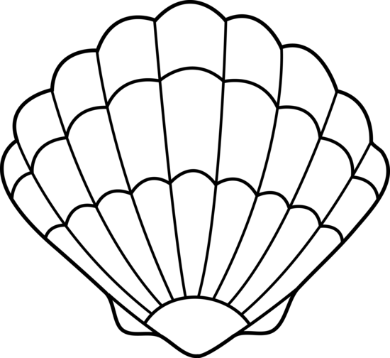 picture royalty free Clam clipart black and white. Sea shell