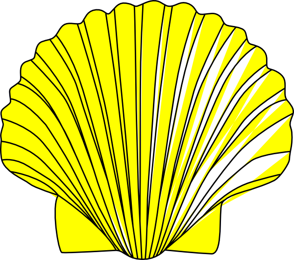 picture freeuse Shell clip art