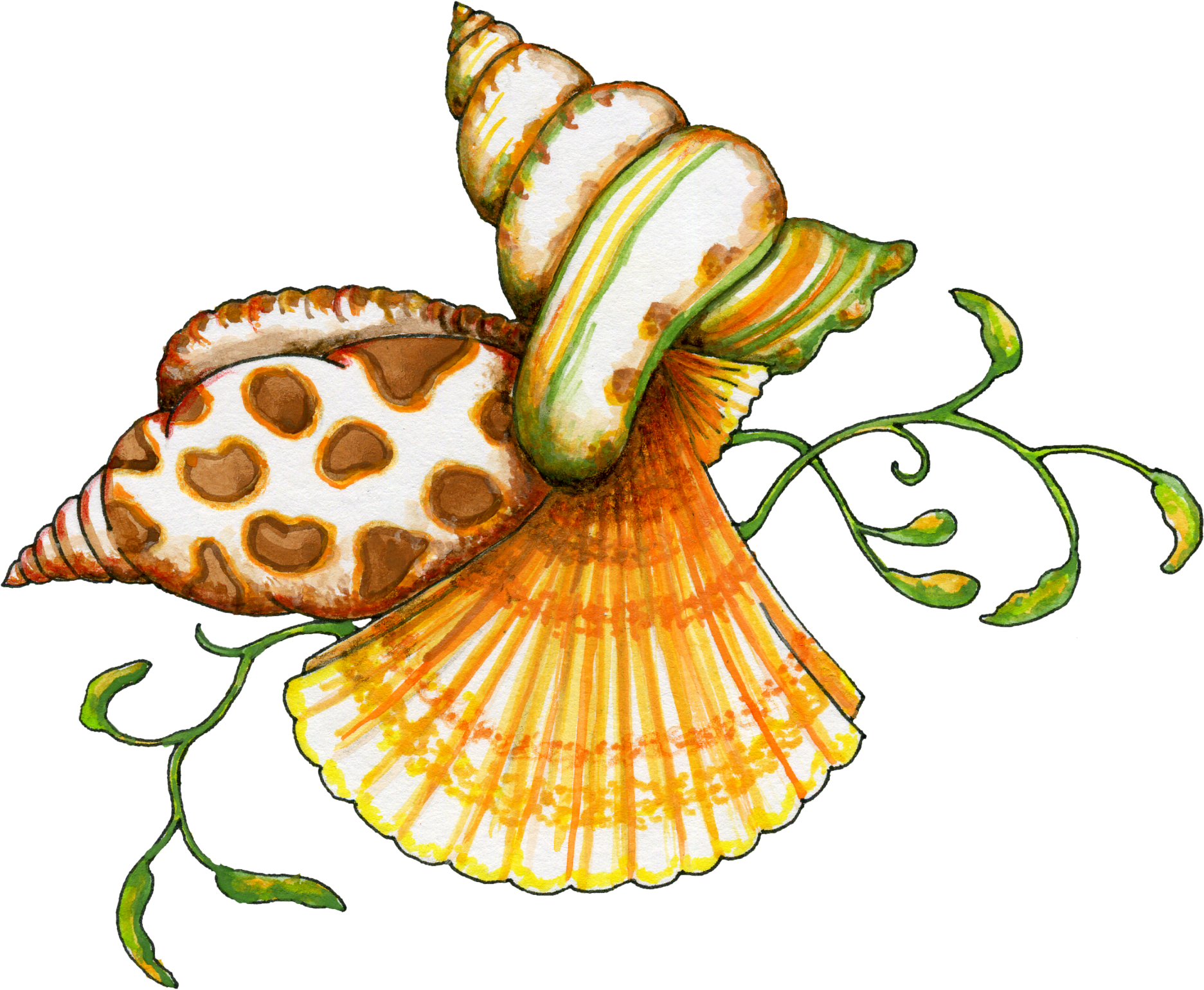 picture freeuse download Shells clipart. Free transparent png files