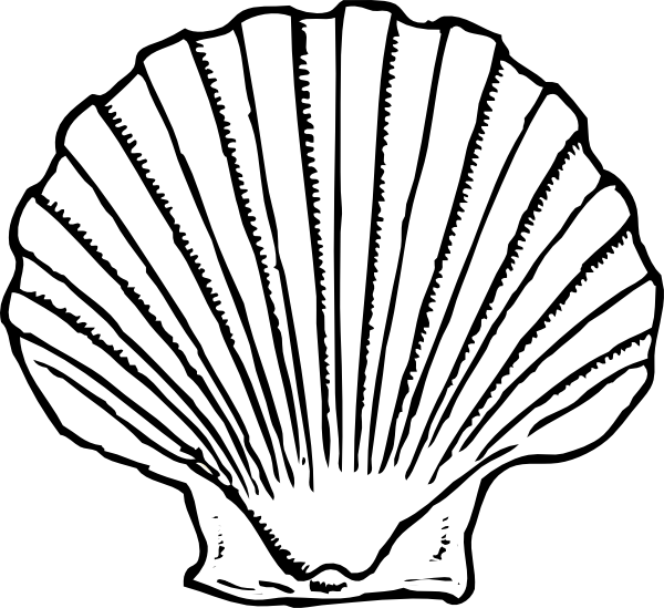 png free stock Sea shell silhouette at. Seashells clipart.