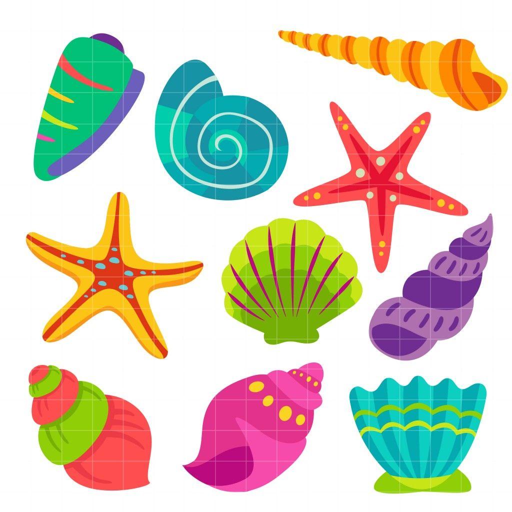 clip art freeuse Colorful set semi exclusive. Seashells clipart.