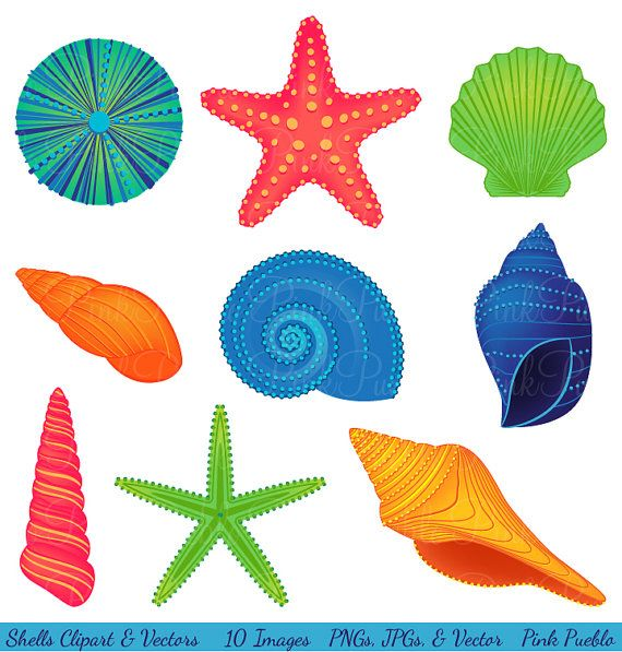 image free Seashells clipart.  sea shells clip.
