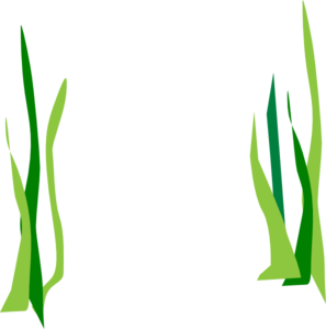 banner free Green Reeds Clip Art at Clker