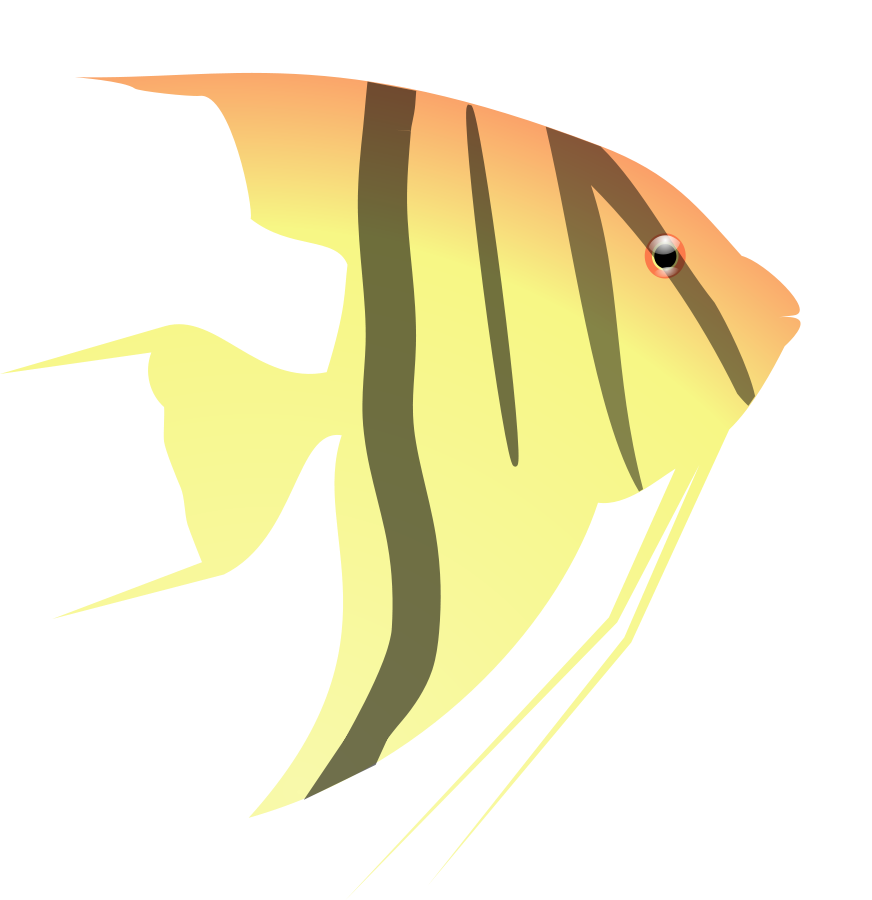 freeuse download Angelfish Clipart Little Fish