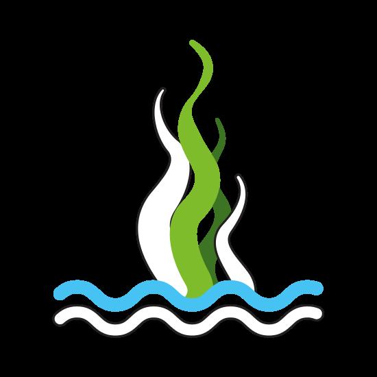 jpg free download Marine Seaweed Sealife Icon