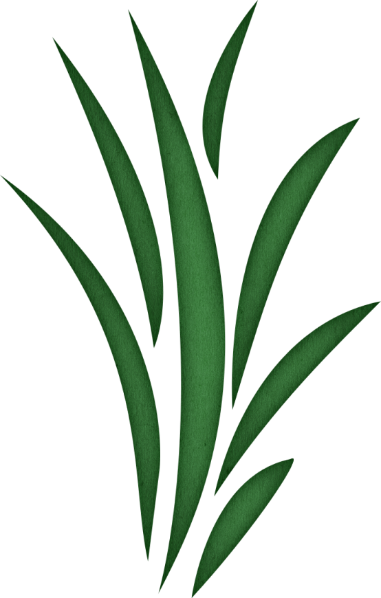 clipart library Seaweed Clipart
