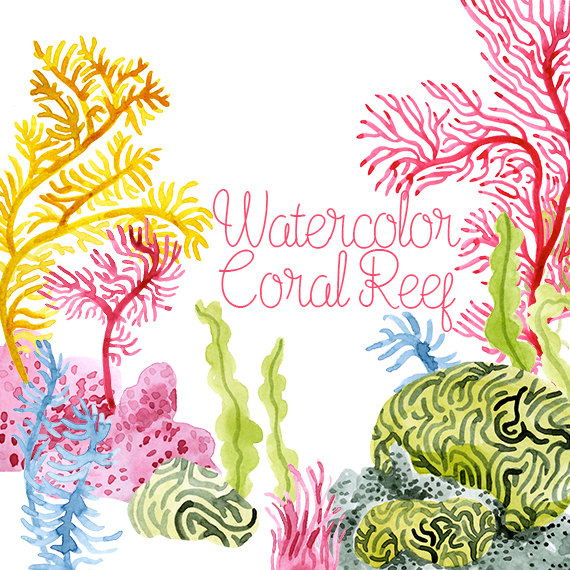 png transparent Coral reef corals clip. Seaweed clipart watercolor