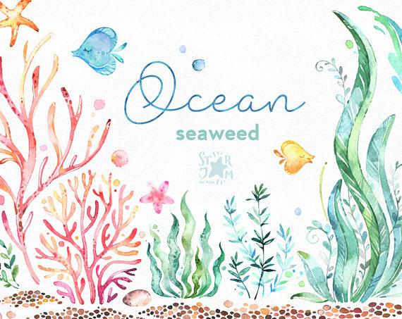 clip art transparent Ocean underwater clip art. Seaweed clipart watercolor