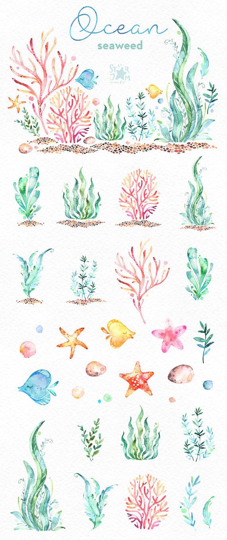 clip art transparent Seaweed clipart watercolor. Ocean underwater clip art
