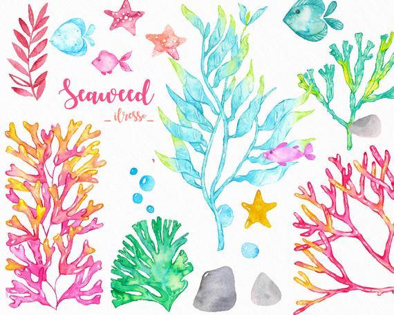 transparent stock Ocean scrapbook sticker fish. Seaweed clipart watercolor
