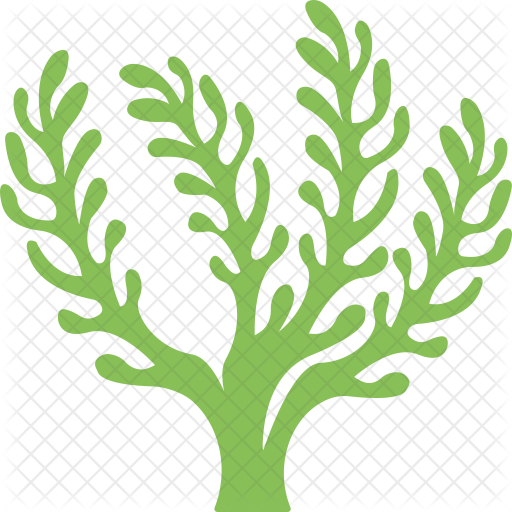 vector black and white library Seaweed Icon
