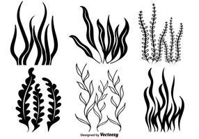 clip royalty free stock Seaweed Variation Set Underwater