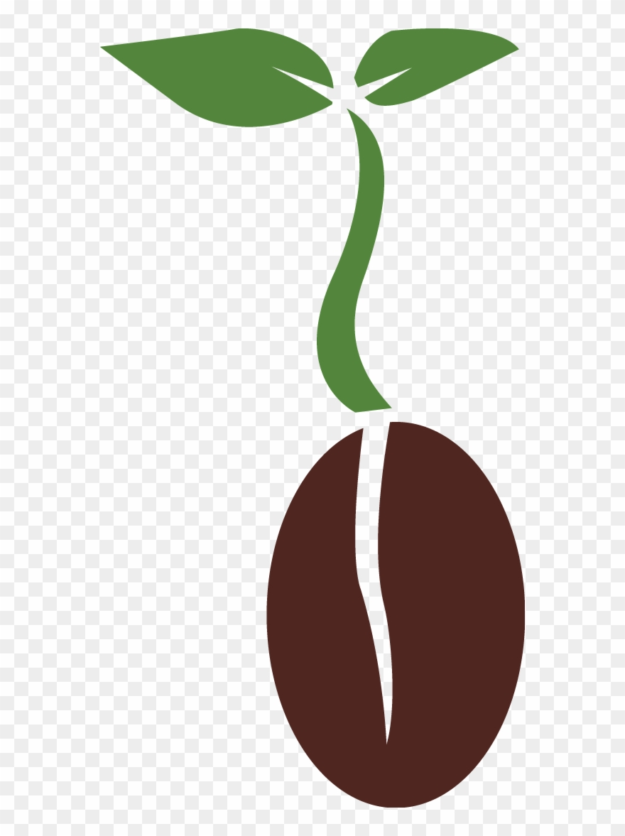clipart freeuse stock Seed clipart. Png plant biology transparent