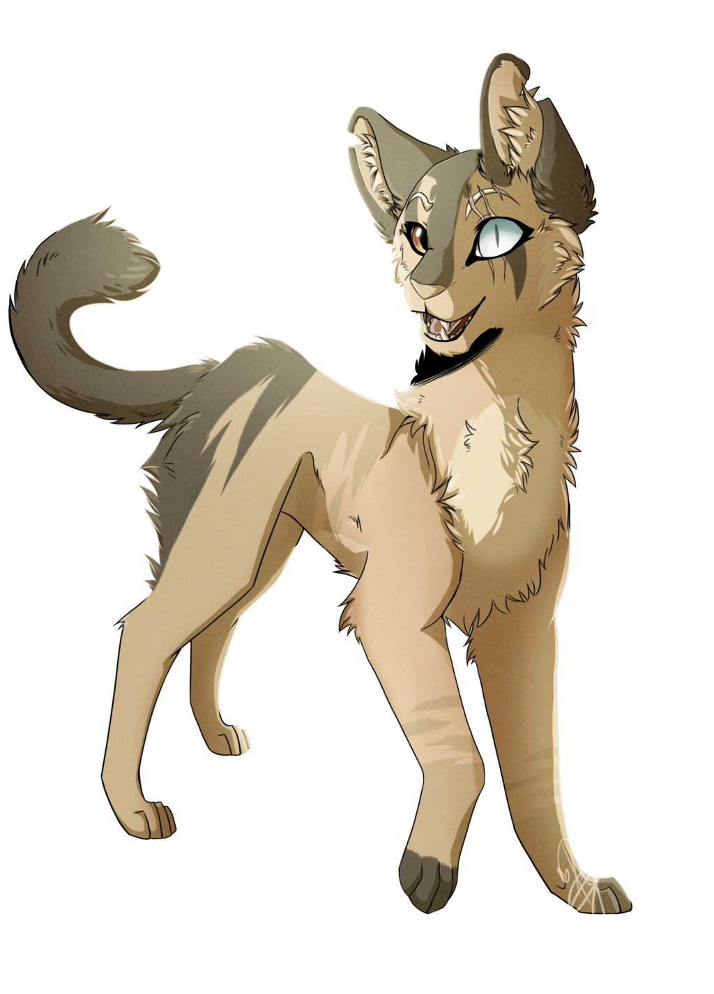 clip royalty free Serval drawing. Gift by kateymanezx on