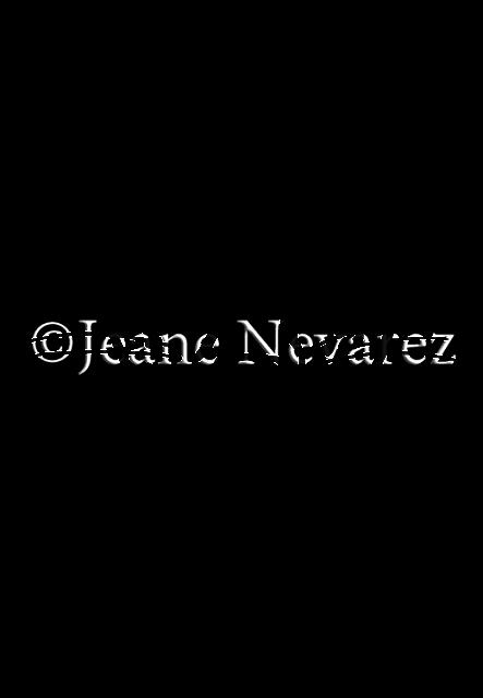 download Serval drawing line. Art by jeane nevarez