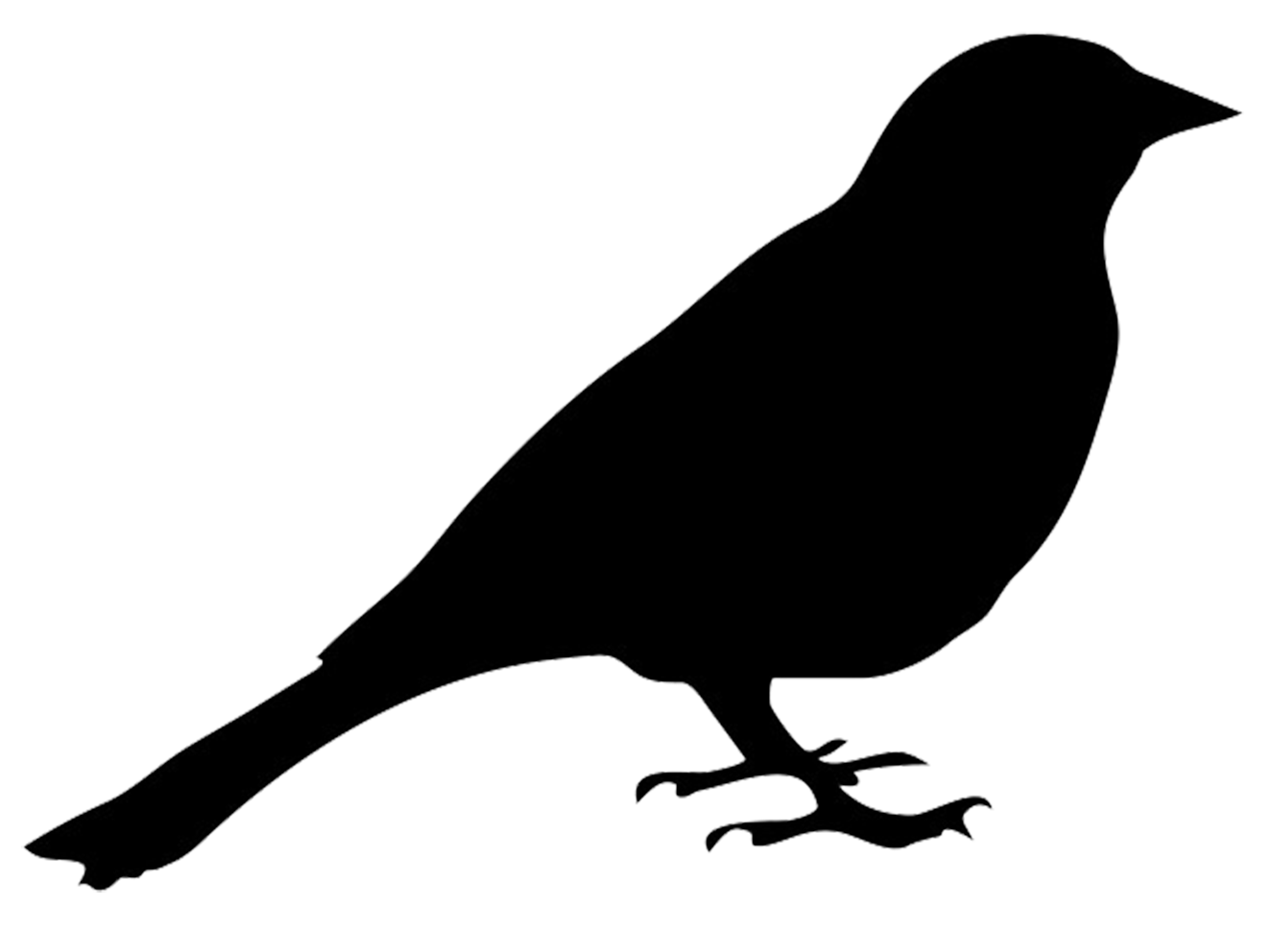 png transparent download Drawing silhouette pencil. Bird silhouettes bullfinch of