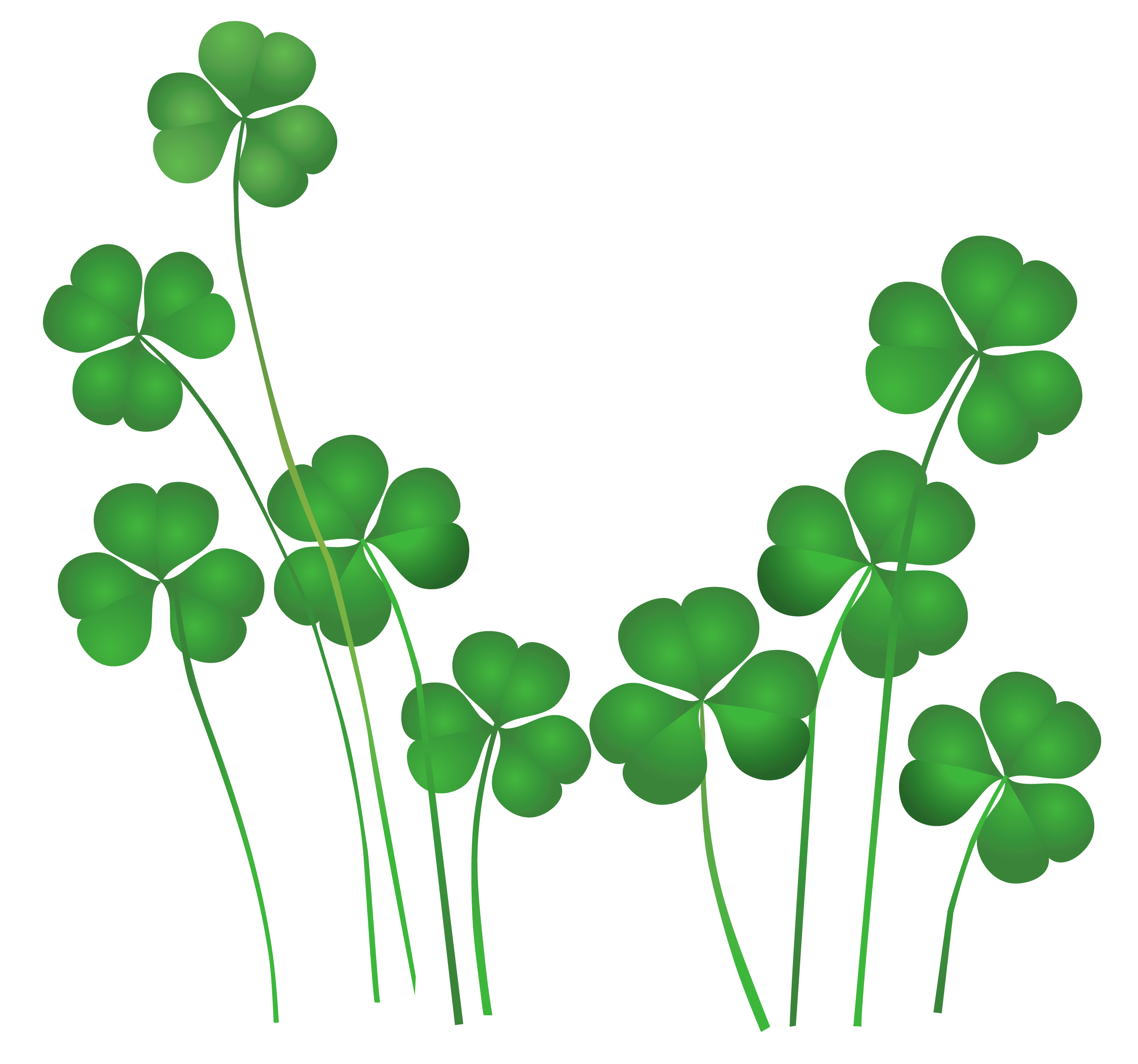 image black and white download St patrick s day. Shamrock clipart
