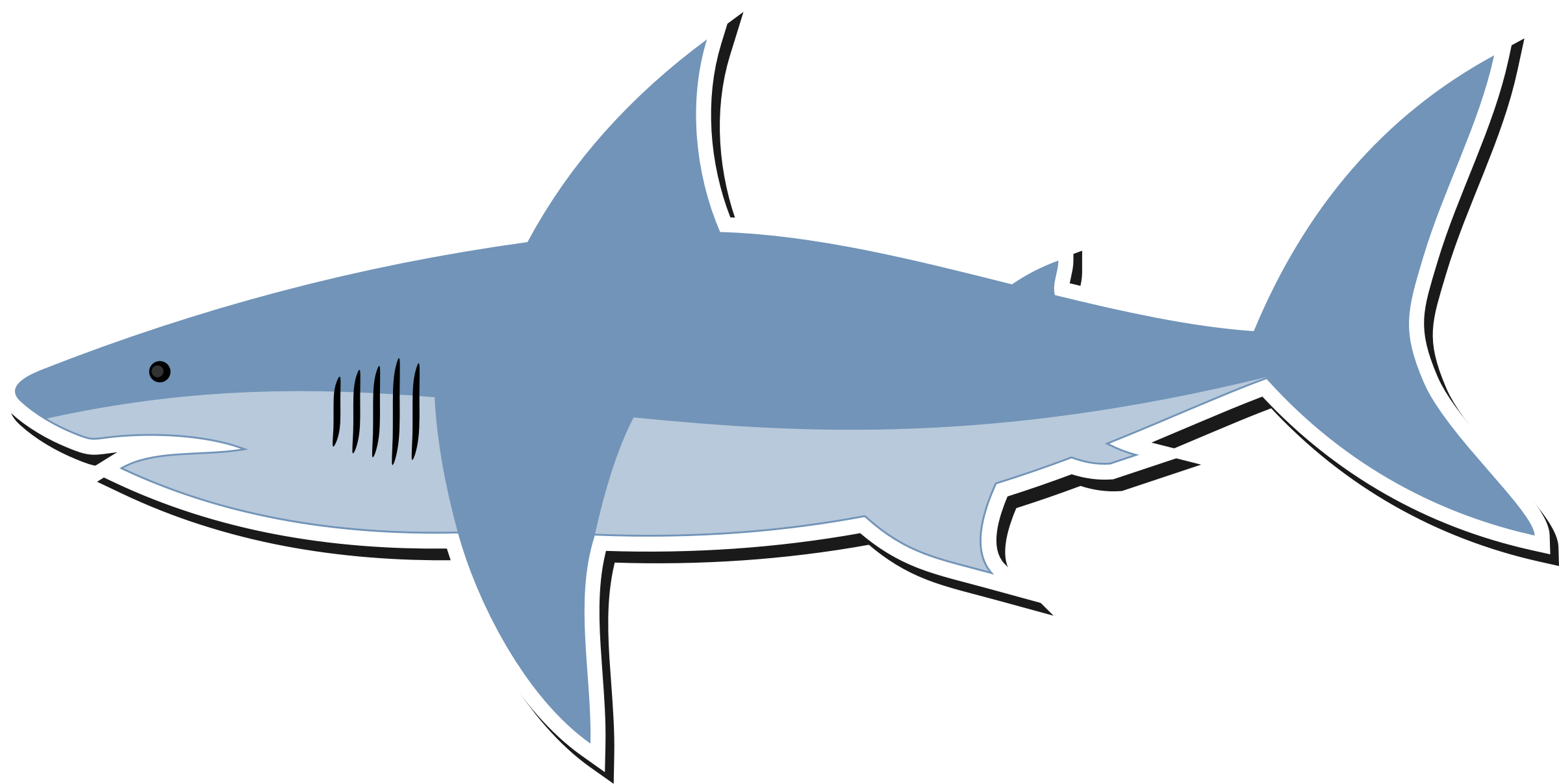 png transparent stock Shark clipart. Bull water free on.